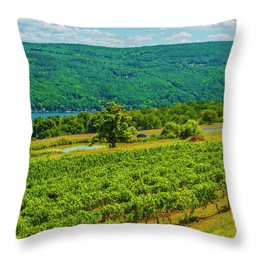 Throw Pillow featuring the photograph Lakeside Vineyard I by Steven Ainsworth