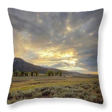 Lamar Valley Sunset Throw Pillow