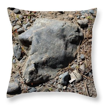 Throw Pillow featuring the photograph Lambchop by Marie Neder