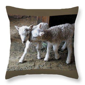 Lambs Throw Pillow by Kae Cheatham