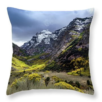 Lamoille Canyon In Fall Throw Pillow