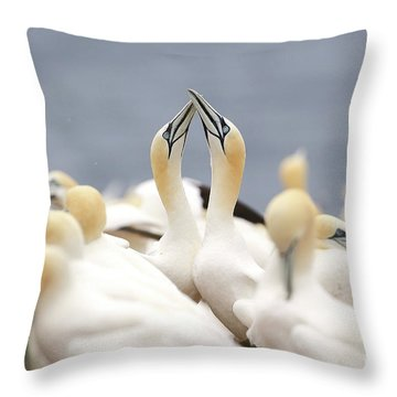 L'amour Fou. Throw Pillow
