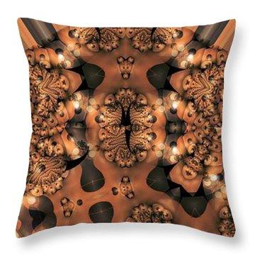 Lamp Light 3 Throw Pillow by Ron Bissett