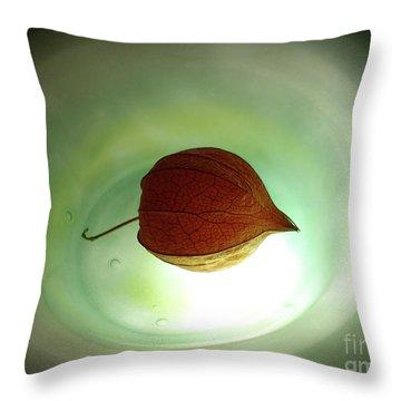 Lampionblume - Physalis Alkekengi Throw Pillow