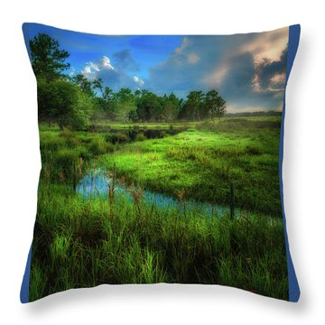 Throw Pillow featuring the photograph Land Of Milk And Honey by Marvin Spates