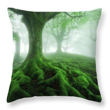 Land Of Roots Throw Pillow