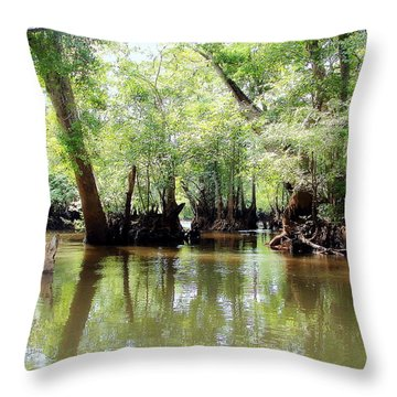 Land Of The Lost Throw Pillow by Debra Forand