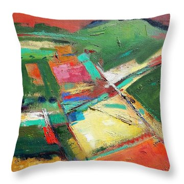 Land Patches Throw Pillow