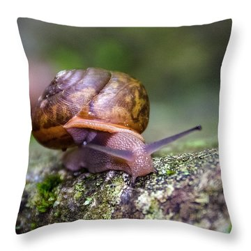 Land Snail II Throw Pillow