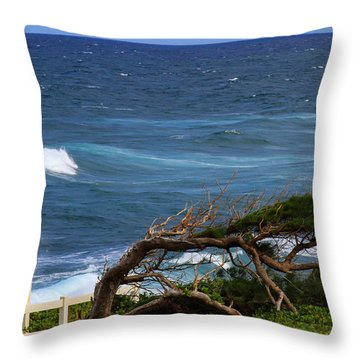 Land Wind And Sea Throw Pillow by Bonnie Follett