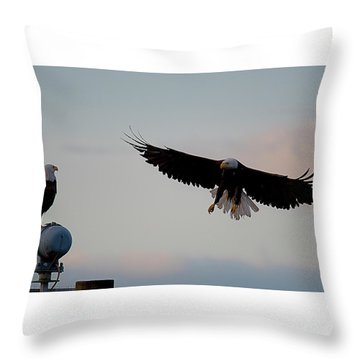 Landing Throw Pillow