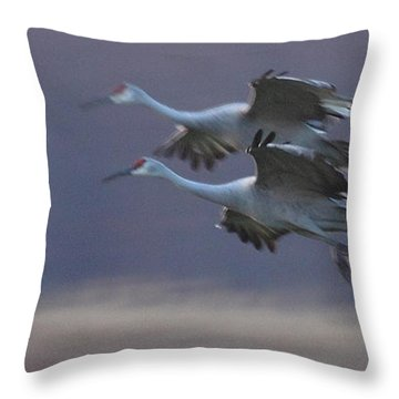 Throw Pillow featuring the photograph Landing Gear Down by Shari Jardina
