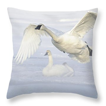 Throw Pillow featuring the photograph Landing In The Cold by Larry Ricker