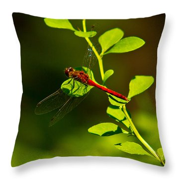 Landing Pad Throw Pillow
