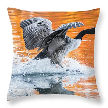 Landing Throw Pillow by Parker Cunningham