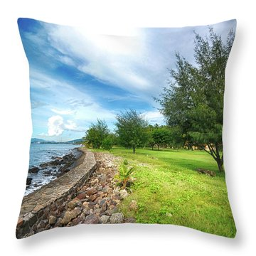 Throw Pillow featuring the photograph Landscape 2 by Charuhas Images