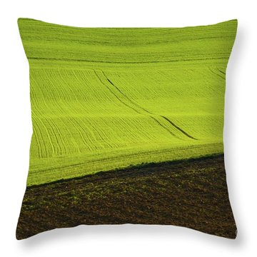Landscape 4 Throw Pillow by Jean Bernard Roussilhe