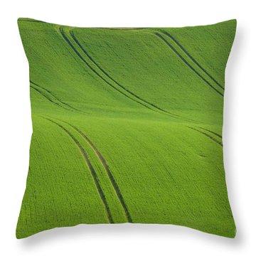 Landscape 5 Throw Pillow by Jean Bernard Roussilhe