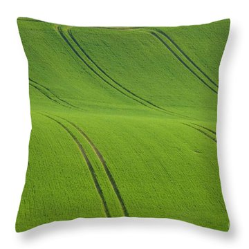 Landscape 5 Throw Pillow