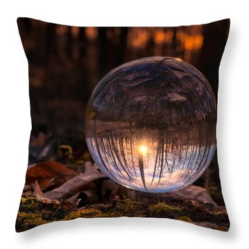 Landscape Throw Pillow by Craig Szymanski