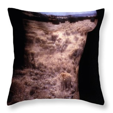 Landscape Dress Throw Pillow by Arla Patch
