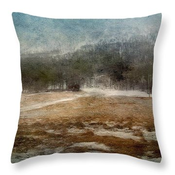 Landscape From Norway Throw Pillow