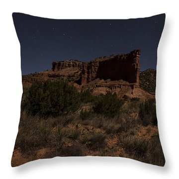 Throw Pillow featuring the photograph Landscape In The Moonlight by Melany Sarafis