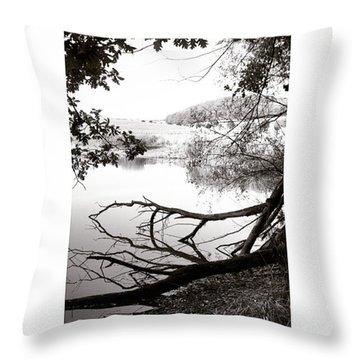 #landscape #lake  #mothernature Throw Pillow