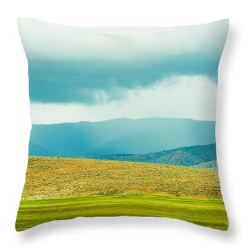 Landscape Layers Throw Pillow by MaryJane Armstrong