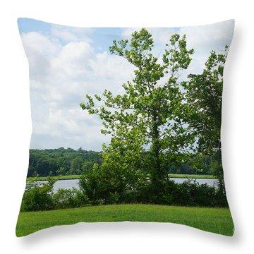 Landscape Photo II Throw Pillow