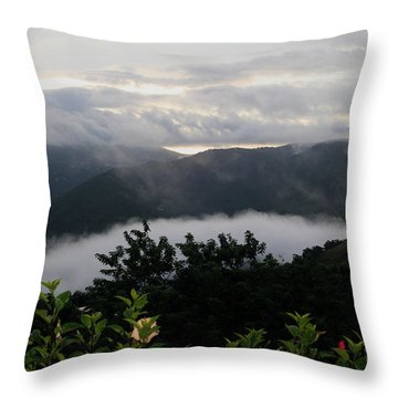 Throw Pillow featuring the photograph Landscape Tropical by The Art of Alice Terrill