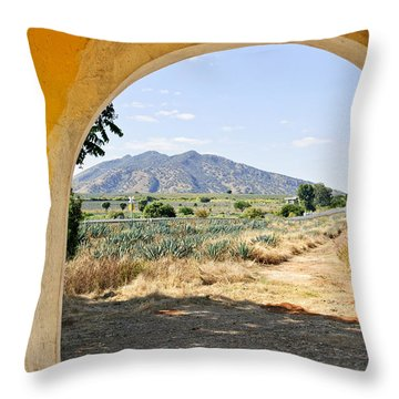 Landscape With Agave Cactus Field In Mexico Throw Pillow by Elena Elisseeva