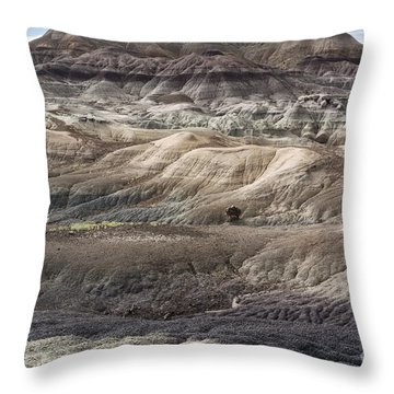 Throw Pillow featuring the photograph Landscape With Many Colors by Melany Sarafis