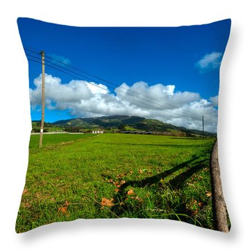 Throw Pillow featuring the photograph Landscapes-26 by Joseph Amaral