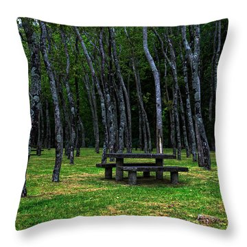 Throw Pillow featuring the photograph Landscapes-40 by Joseph Amaral