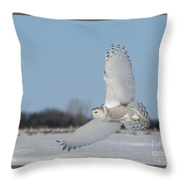 L'ange Qui Chasse Throw Pillow