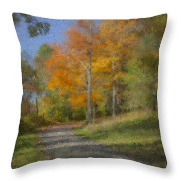 Langwater Path In October Throw Pillow