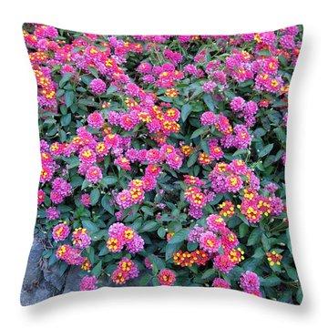 Lantana Throw Pillow