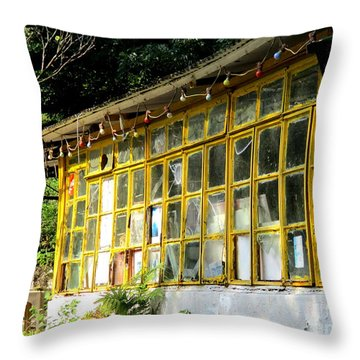 Throw Pillow featuring the photograph Lantau Island 46 by Randall Weidner