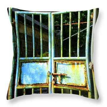 Throw Pillow featuring the photograph Lantau Island 48 by Randall Weidner
