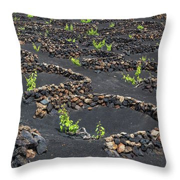 Lanzarote Vineyards Throw Pillow by Delphimages Photo Creations