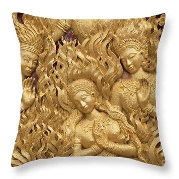 Laos_d60 Throw Pillow by Craig Lovell