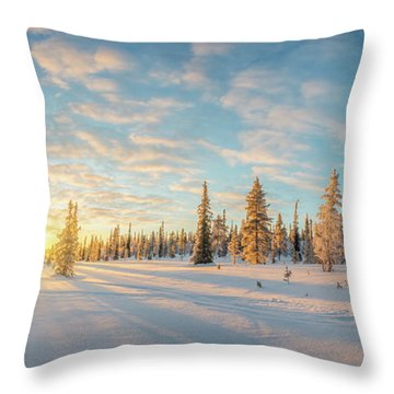 Throw Pillow featuring the photograph Lapland Panorama by Delphimages Photo Creations