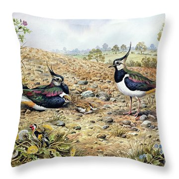 Lapwing Family With Goldfinches Throw Pillow by Carl Donner
