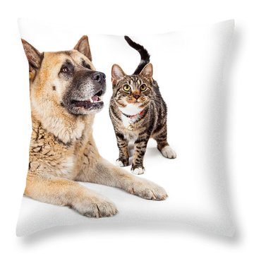 Large Dog And Cat Looking Up Together Throw Pillow