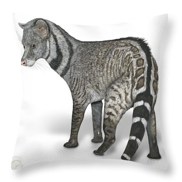 Throw Pillow featuring the painting Large Indian Civet Viverra Zibetha - Grande Civette - Gran Civeta India - Indische Zibetkatze by Urft Valley Art