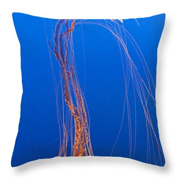 Large Jelly Fish Throw Pillow by Darcy Michaelchuk