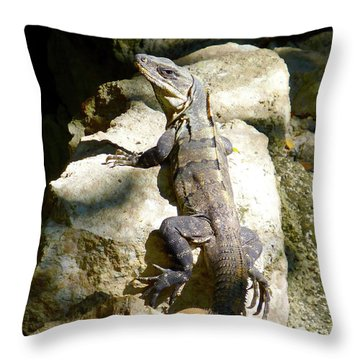 Throw Pillow featuring the photograph Large Lizard M by Francesca Mackenney