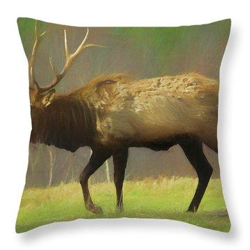 Large Pennsylvania Bull Elk. Throw Pillow