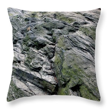 Large Rock At Central Park Throw Pillow by Sandy Moulder